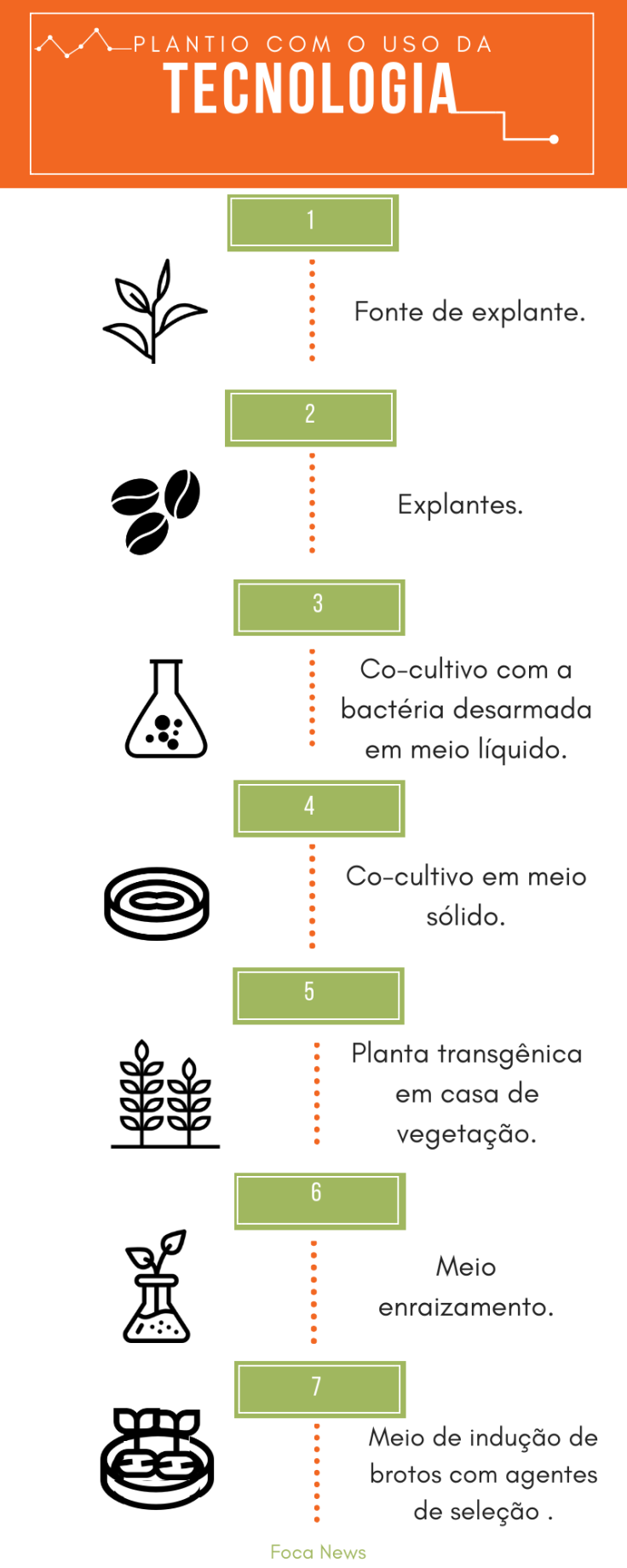 infografico (1).png